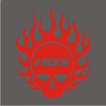 Hell Bent Steel Flaming Skull